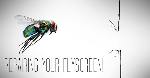 Repairing-your-Flyscreen