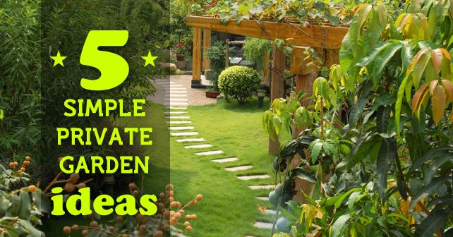 Remarkable small private garden ideas contemporary best for Small private garden ideas